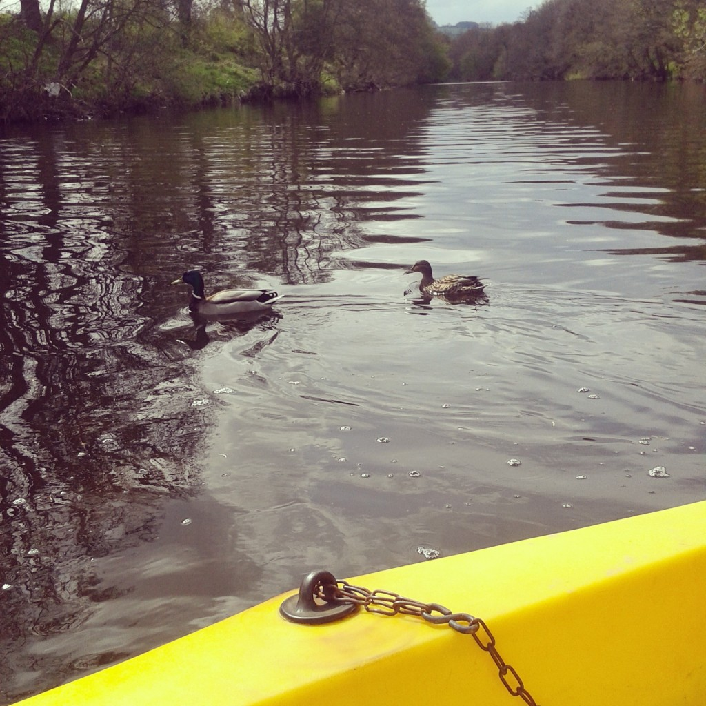 Boating in Brecon.